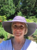 Purple Hat, OR in Italy