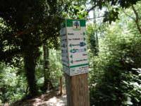 Trail San Fruttuoso to Portofino, Italy