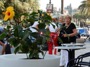 Busted, people in Rapallo, Italy