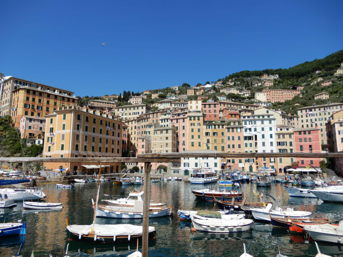 Camogli boats against the city, Liguria, Italy