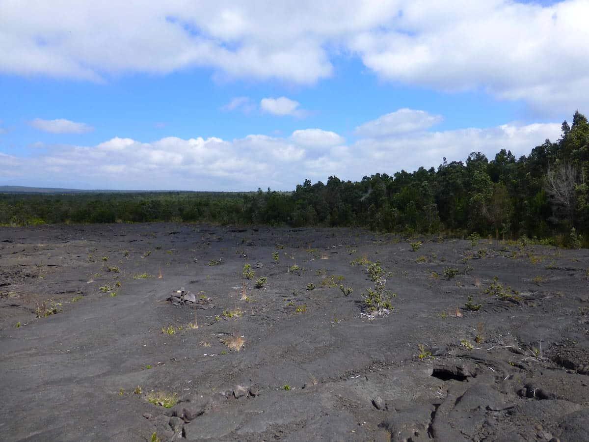 Green & Gray, Volcanoes National park, The Big Island, Hawaii